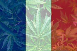 CBD France